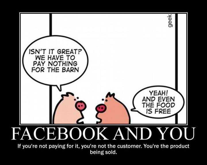 The pigs find facebook